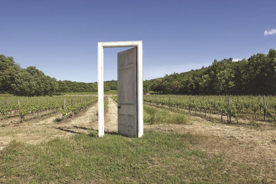porte ouverte sur vignoble