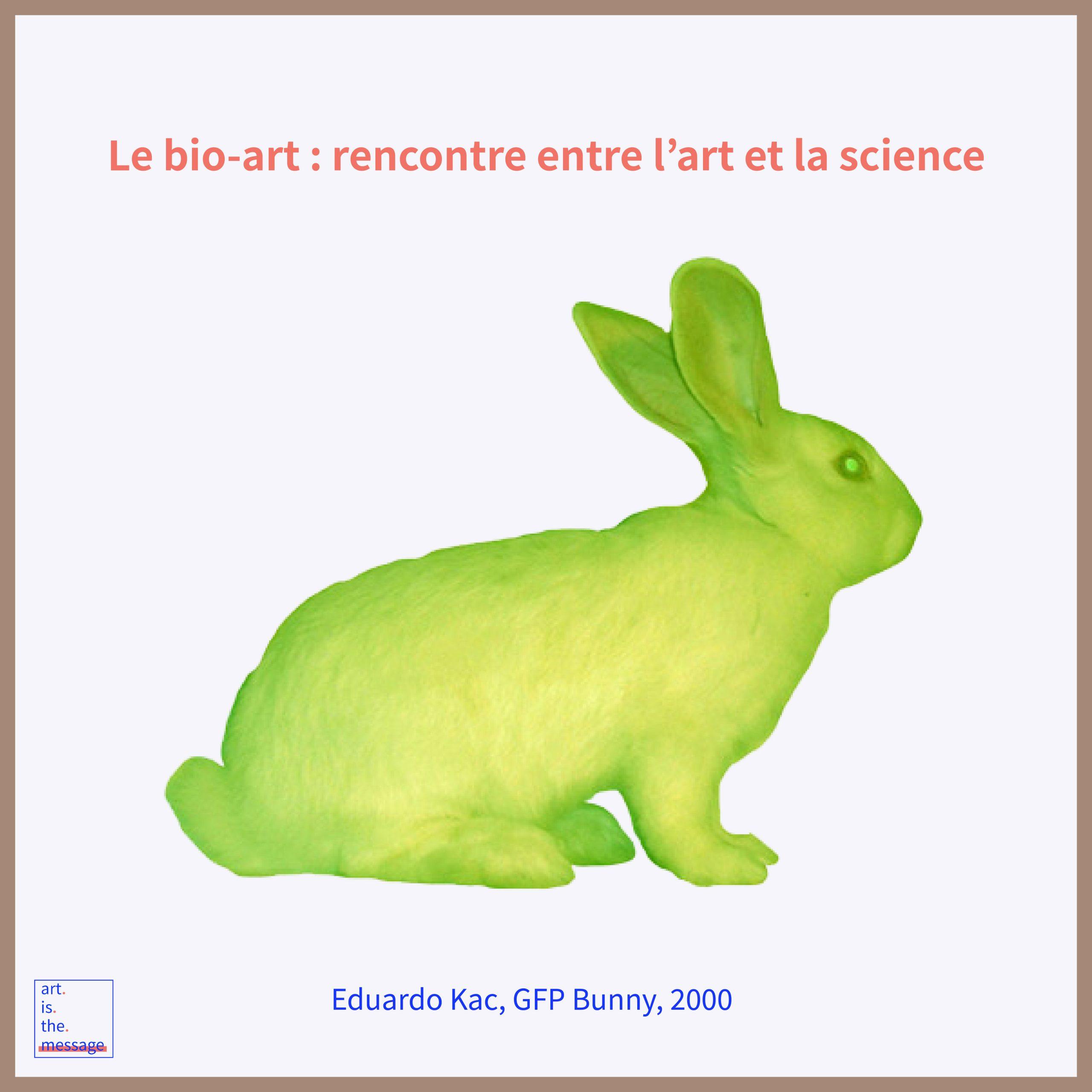 lapin fluorescent bio-art